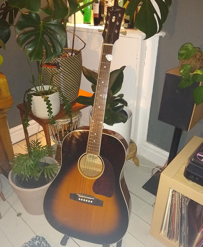 A Tokai acoustic guitar on a wooden floor with plants in the background.